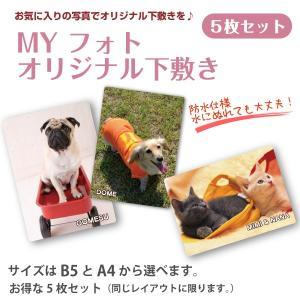 犬・猫の写真入り下敷き  MY フォト オリジナル下敷き 5枚 petgp