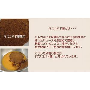 パウンドケーキ フルーツパウンド|petitefleur-yokohama|06