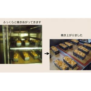 パウンドケーキ アプリコットアールグレー|petitefleur-yokohama|05