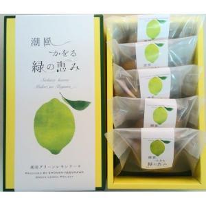 湘南グリーンレモンケーキ5個入り|petitefleur-yokohama
