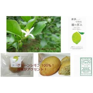 湘南グリーンレモンケーキ5個入り petitefleur-yokohama 05