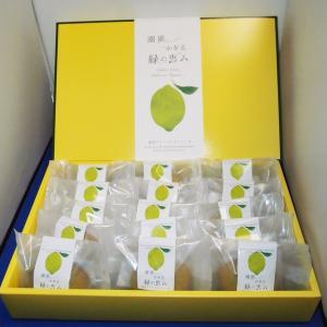 湘南グリーンレモンケーキ15個入り|petitefleur-yokohama