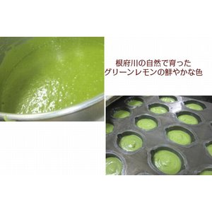 湘南グリーンレモンケーキ15個入り|petitefleur-yokohama|06