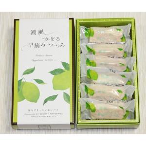 湘南グリーンレモンパイ6個入り|petitefleur-yokohama