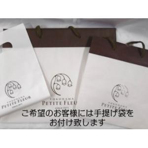 湘南グリーンレモンパイ6個入り|petitefleur-yokohama|05
