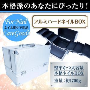 アルミハードネイルBOX [ ネイルバニティバッグ ネイル バッグ ]【宅配便】|petitprice