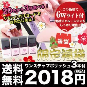 福袋【今だけ3色選べる】6WコンパクトLEDライト付☆シンプ...