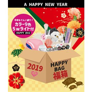 【5wライト】2019年新春福箱【宅配便】|petitprice