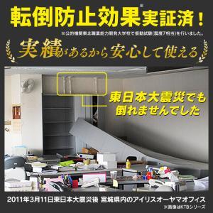 家具転倒防止伸縮棒 L 2本セット KTB-60 ホワイト 高さ60〜100cm アイリスオーヤマ 地震対策グッズ 防災用品|petkan|02