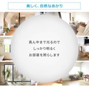 シーリングライト LED 6畳 照明 天井照明 LEDシーリングライト シーリングライト 天井 照明器具 ライト 電気 5.0 調光 CL6D-AG  AGLED|petkan|06