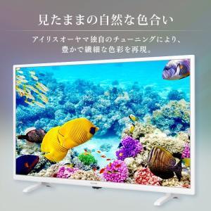 テレビ 40型 本体 液晶テレビ 新品 アイリスオーヤマ フルハイビジョンテレビ 40インチ 40FB10P|petkan|03