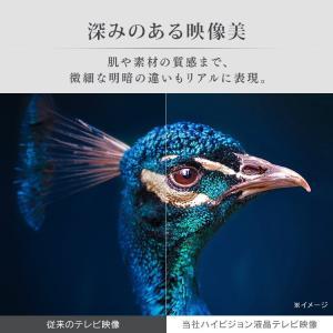 テレビ 40型 本体 液晶テレビ 新品 アイリスオーヤマ フルハイビジョンテレビ 40インチ 40FB10P|petkan|04
