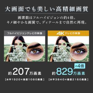 テレビ 50型 50インチ 液晶テレビ 新品 アイリスオーヤマ 4K対応液晶テレビ 50インチ ブラック 50UB10P:予約品|petkan|05