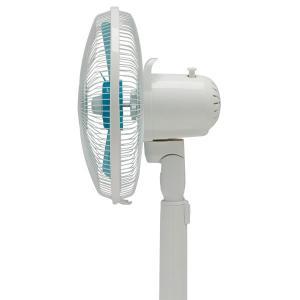扇風機 EFB-31-W/A アイリスオーヤマ セール 扇風機 サーキュレーター ファン 家庭用|petkan|05