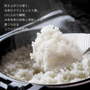 炊飯器 圧力IH IH炊飯器 圧力IH炊飯ジャー 圧力IH炊飯器 銘柄炊き 5合(5.5合) IH RC-PA50-B アイリスオーヤマ|petkan|02
