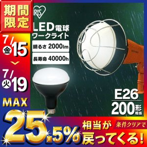 投光器 LED 投光器用交換電球 2000lm LDR18D-H アイリスオーヤマ スペア電球