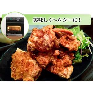 ノンフライ アイリスオーヤマ リクック スチーム リクック熱風オーブン シルバー FVX-M3B-S アイリスオーヤマ|petkan|02