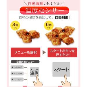 ノンフライ アイリスオーヤマ リクック スチーム リクック熱風オーブン シルバー FVX-M3B-S アイリスオーヤマ|petkan|11
