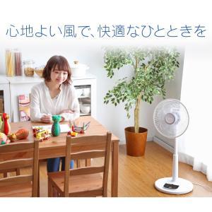 扇風機 おしゃれ 安い アイリスオーヤマ リビング リモコン リビング扇風機 リビング扇 ACモーター LFA-306(あすつく)|petkan|19