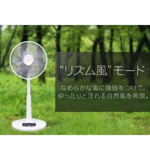 扇風機 おしゃれ 安い アイリスオーヤマ リビング リモコン リビング扇風機 リビング扇 ACモーター LFA-306(あすつく)|petkan|06