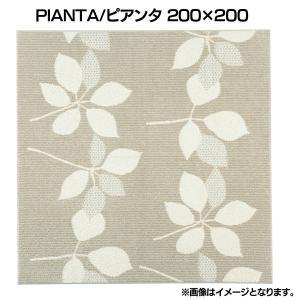 PIANTA/ピアンタ長ピアンタ 200×200 (スミノエ)(代引不可) petkan