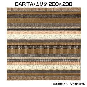 CARITA/カリタ 200×200 (スミノエ)(代引不可) petkan
