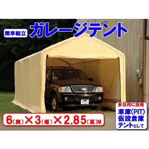 ガレージテント 3×6m C1020102【代金引換不可】|petkan|03