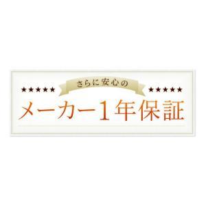 アイロン スチーム  スチームアイロン ドライ 新生活 立ち上がり早い  SIR-01-A アイリスオーヤマ|petkan|09