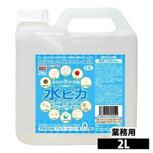 洗剤 アルカリ電解水 水ピカ 2L クリーナー 高濃度(pH13.1) お掃除 洗剤 掃除用 クリー...