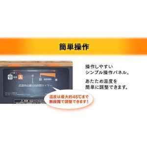ホットカーペット 1.5畳用 本体 ダニ退治 折り畳み 1.5畳 電気カーペット 電気マット ホットマット 電気ホットカーペット本体 TWA-1500BI TEKNOS(D)(あすつく) petkan 04