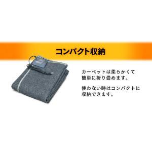 ホットカーペット 1.5畳用 本体 ダニ退治 折り畳み 1.5畳 電気カーペット 電気マット ホットマット 電気ホットカーペット本体 TWA-1500BI TEKNOS(D)(あすつく) petkan 05