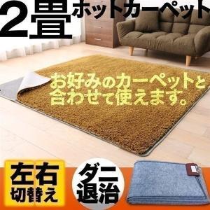 ホットカーペット 本体 2畳 電気カーペット 暖房器具 カーペット ラグ 暖房 HT-20NP 三京 (D)