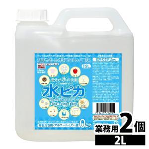 2個セット アルカリ電解水クリーナー 水ピカ2L (D)