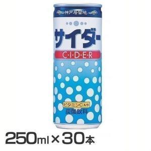 (30本)神戸居留地 サイダー 缶 250ml 富永貿易 (D)|megastore PayPayモール店