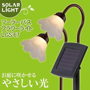 タカショー ソーラーパスフラワーライト LGS-67 2本セット 電球色