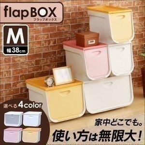 フラップボックス 2個セット 収納ケース 収納ボックス 衣装ケース FLP-M アイリスオーヤマ|petkan