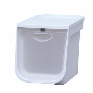 フラップボックス  収納ケース 収納ボックス 衣装ケース FLP-S アイリスオーヤマ(あすつく)|petkan