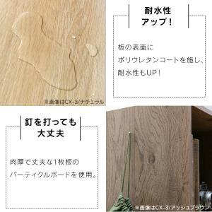 カラーボックス 2段 CX-2 アイリスオーヤマ|petkan|12