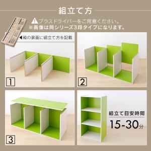 カラーボックス 2段 CX-2 アイリスオーヤマ|petkan|13