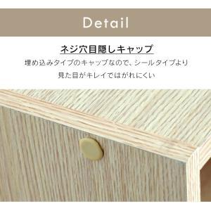 カラーボックス 2段 CX-2 アイリスオーヤマ|petkan|15