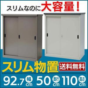 物置スリムタイプ 物置 収納庫 収納 屋外収納 物置き 倉庫 AD-9110C (代引不可)(TD)|petkan