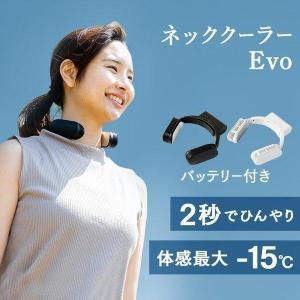 首掛け 羽無し ネッククーラーEvo TK-NEMB3 サンコー 涼しい 携帯型 (D)(B)