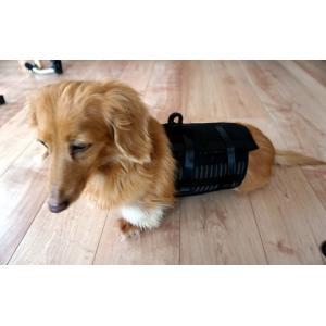 犬用コルセット・猫用コルセット - サイズ: 大|petlab