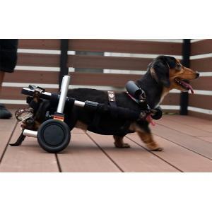 犬用車椅子・猫用車椅子 - サイズ: M|petlab|02