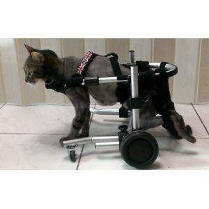 犬用車椅子・猫用車椅子 - サイズ: XS|petlab|05