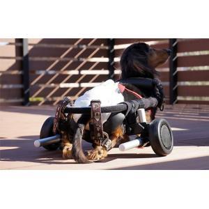 犬用車椅子・猫用車椅子 - サイズ: XS|petlab|06