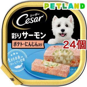 シーザー サーモン風味 ポテトとにんじん入り  ( 100g*24コセット )/ シーザー(ドッグフード)(Cesar) petland