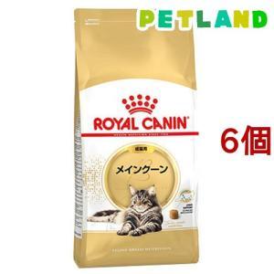 ロイヤルカナン FBN  メインクーン 成猫用 ( 2kg*6コセット )/ ロイヤルカナン(ROYAL CANIN)