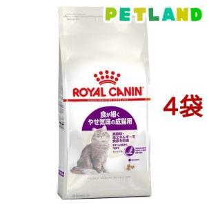 ロイヤルカナン フィーラインヘルスニュートリション センシブル ( 4kg*4コセット )/ ロイヤルカナン(ROYAL CANIN)