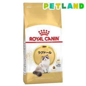 ロイヤルカナンFBN  ラグドール 成猫用 ( 2kg )/ ロイヤルカナン(ROYAL CANIN)